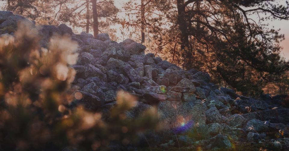 Sammallahdenmäen hautaröykkiö, kuva Rauman kaupunki